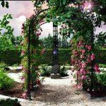 Az Olajág Otthonokban kerti oázis is épül